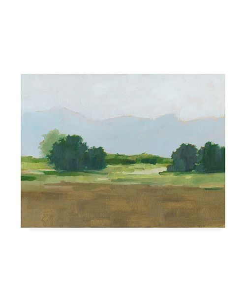 "Trademark Global Ethan Harper Viridian Shade II Canvas Art - 36.5"" x 48"""