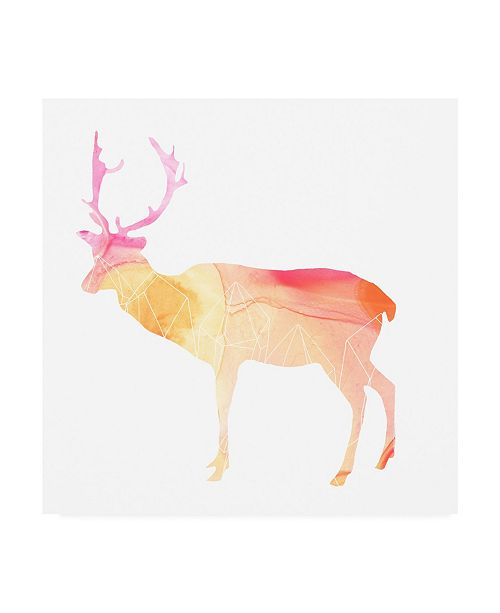 "Trademark Global June Erica Vess Agate Animal V Canvas Art - 15.5"" x 21"""