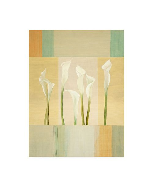 "Trademark Global Pablo Esteban Calla Lilies on Beige Pattern Canvas Art - 15.5"" x 21"""