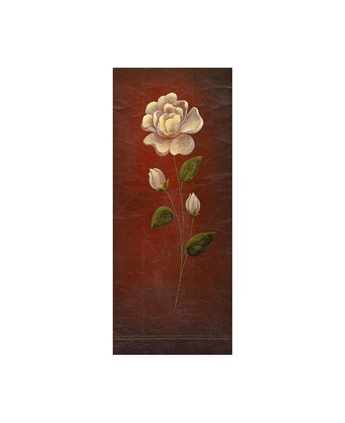 "Trademark Global Pablo Esteban White Rose on Red Background Canvas Art - 19.5"" x 26"""