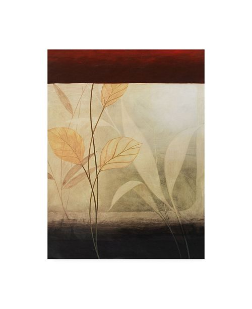 "Trademark Global Pablo Esteban Leaves with a Border Canvas Art - 36.5"" x 48"""