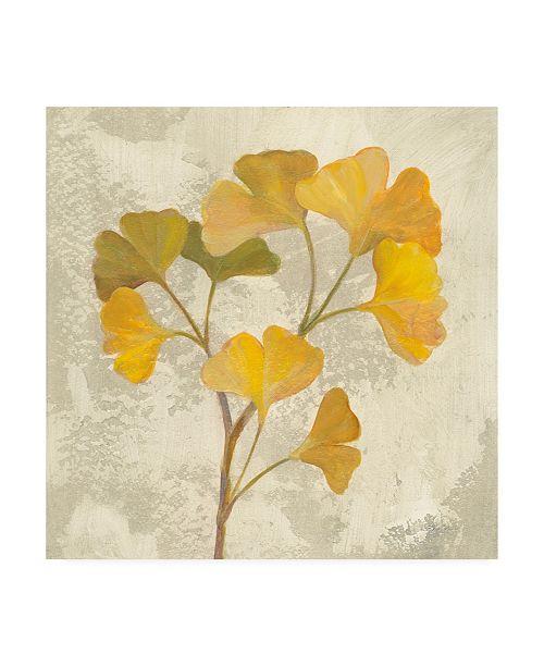 "Trademark Global Silvia Vassileva November Leaves III Canvas Art - 15.5"" x 21"""