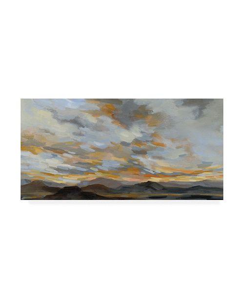 """Trademark Global Silvia Vassileva High Desert Sky I Canvas Art - 19.5"""" x 26"""""""