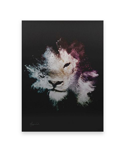 "Trademark Global Philippe Hugonnard Wild Explosion Collection - the Lion Floating Brushed Aluminum Art - 21"" x 25"""
