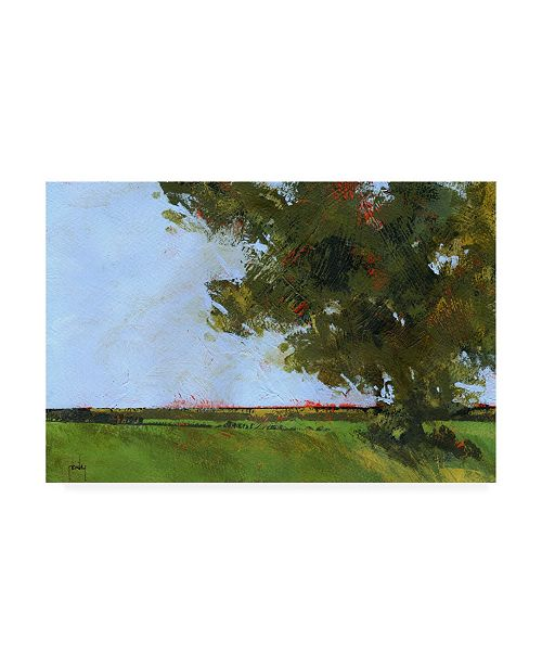 "Trademark Global Paul Baile Autumn Oak and Empty Fields Canvas Art - 15.5"" x 21"""