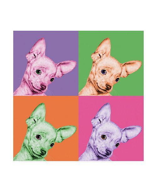 "Trademark Global Jon Bertell Sweet Chihuahua Pop Canvas Art - 36.5"" x 48"""