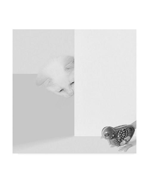 "Trademark Global Jon Bertell Peek a Boo Cat Canvas Art - 36.5"" x 48"""
