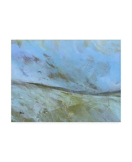 "Trademark Global Paul Baile November Moor Canvas Art - 36.5"" x 48"""