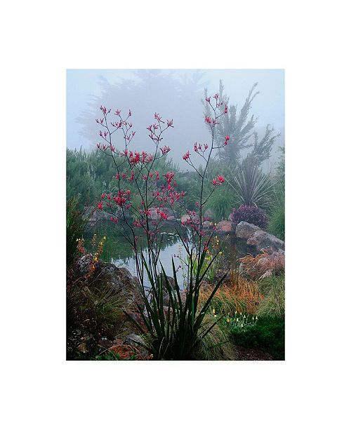 "Trademark Global Lucy Aro Scarlet Marsh Canvas Art - 15.5"" x 21"""