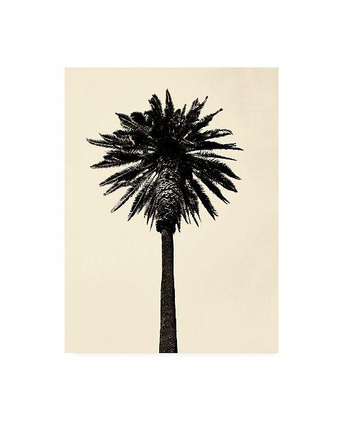 "Trademark Global Erik Asl Palm Tree 1979 Tan Canvas Art - 36.5"" x 48"""