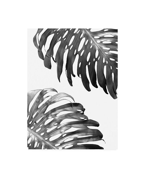 "Trademark Global Lexie Gree Double Philodendron (BW) Canvas Art - 19.5"" x 26"""