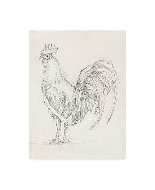 "Trademark Global Ethan Harper Rooster Sketch II Canvas Art - 20"" x 25"""