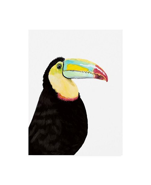 "Trademark Global Naomi Mccavitt Watercolor Toucan Canvas Art - 15"" x 20"""