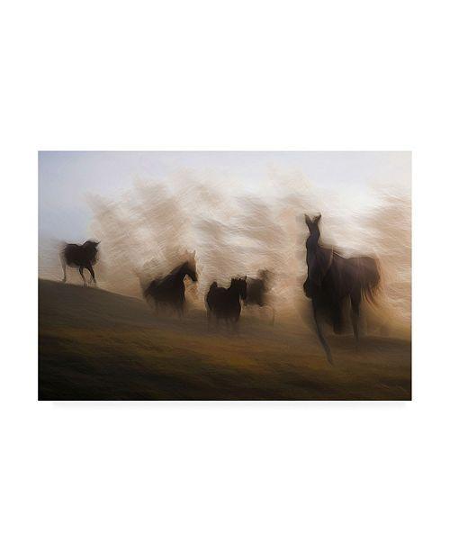 "Trademark Global Milan Malovrh Blurred Horses Canvas Art - 37"" x 49"""