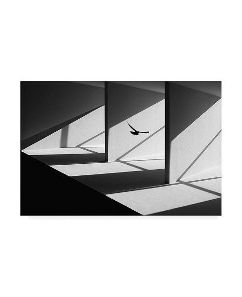 "Trademark Global Huib Limberg Searching Way Out Canvas Art - 20"" x 25"""