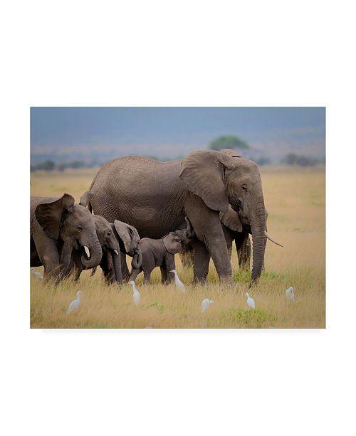 """Trademark Global Young Feng Big Family Elephants Canvas Art - 20"""" x 25"""""""
