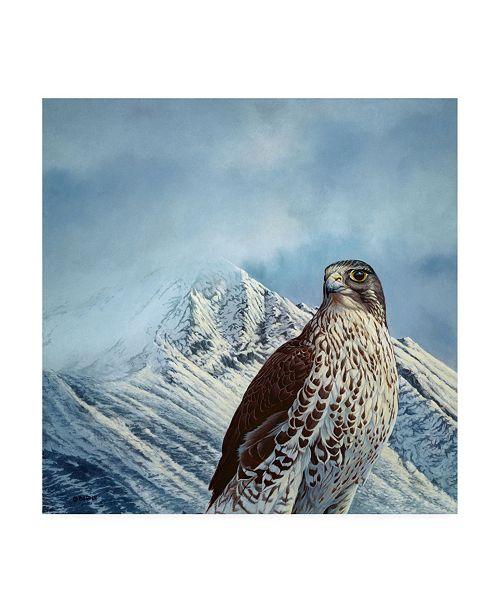 "Trademark Global Michael Budden Gyr Falcon Canvas Art - 15"" x 20"""