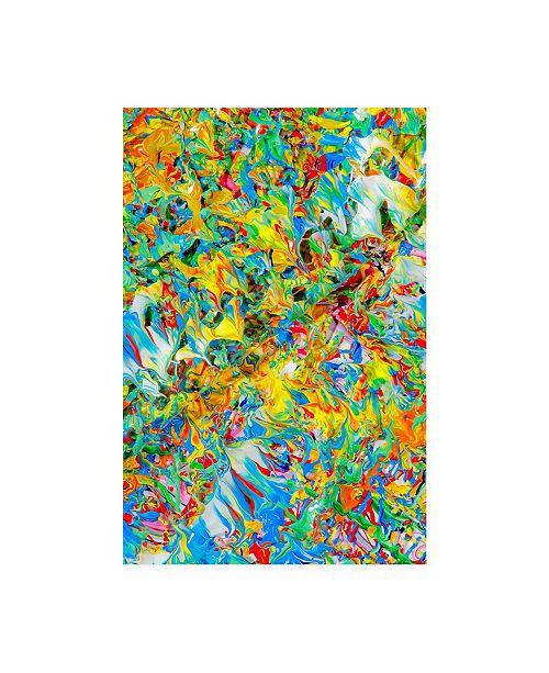 "Trademark Global Mark Lovejoy Abstract Splatters Lovejoy 15 Canvas Art - 20"" x 25"""
