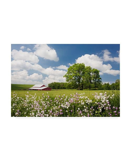 """Trademark Global Monte Nagler Flowers and Farm Holmes County Ohio Canvas Art - 20"""" x 25"""""""
