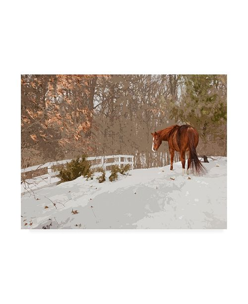 """Trademark Global Monte Nagler Horse in the Snow Milford Michigan Canvas Art - 37"""" x 49"""""""