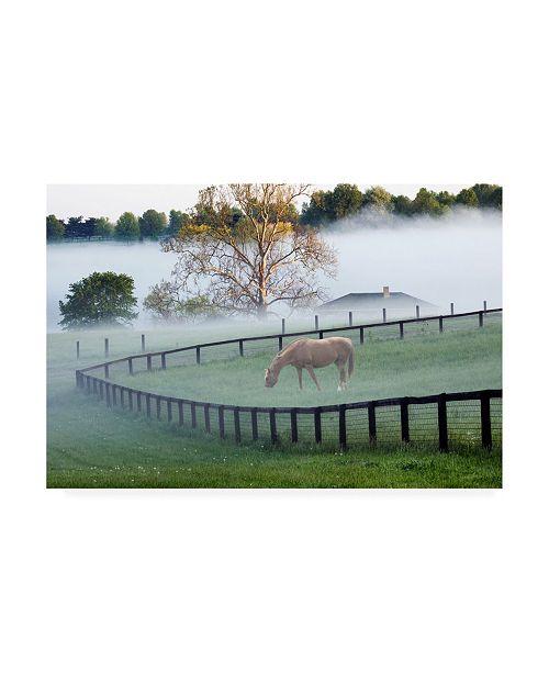 "Trademark Global Monte Nagler Horses in the Mist Kentucky Canvas Art - 20"" x 25"""