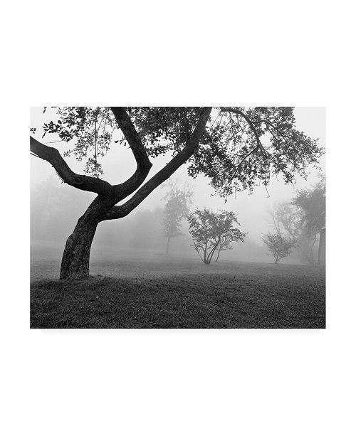 "Trademark Global Monte Nagler Morning Mist Farmington Hills Michigan Canvas Art - 37"" x 49"""