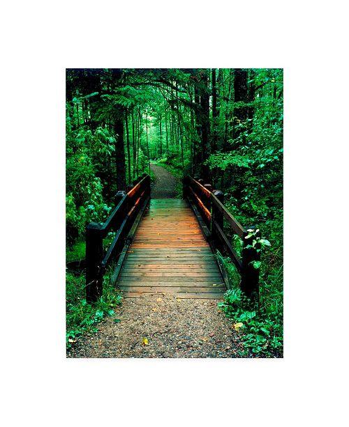 "Trademark Global Monte Nagler Wooden Bridge Sundell Michigan Canvas Art - 15"" x 20"""