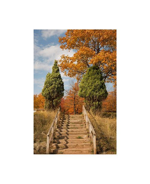 """Trademark Global Monte Nagler Wooden Steps in Autumn Marquette Michigan Color Canvas Art - 37"""" x 49"""""""