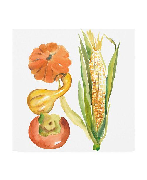 "Trademark Global Chariklia Zarris Harvest Medley V Canvas Art - 27"" x 33"""