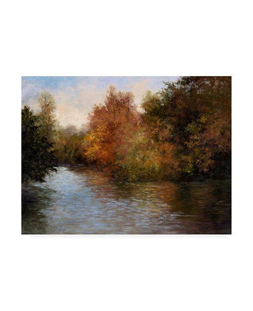"Trademark Global Mary Jean Weber A Light on the Lake Canvas Art - 20"" x 25"""