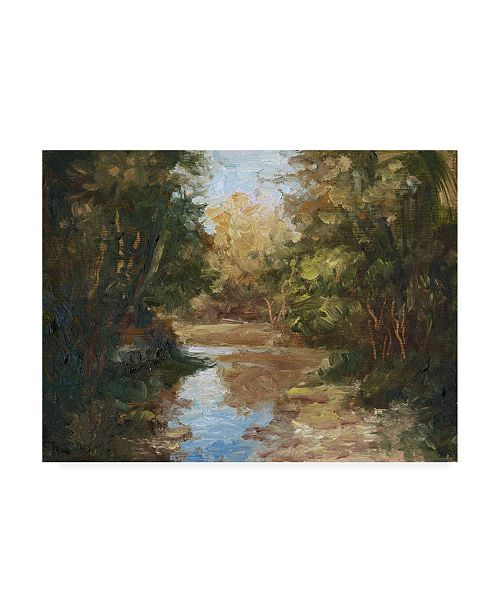 "Trademark Global Mary Jean Weber Winding River Canvas Art - 37"" x 49"""