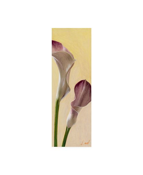 "Trademark Global Pablo Esteban Pink Floral Bell 1 Canvas Art - 27"" x 33.5"""