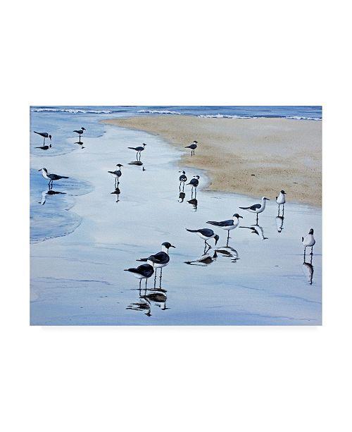 "Trademark Global Patrick Sullivan Many Birds Canvas Art - 15.5"" x 21"""
