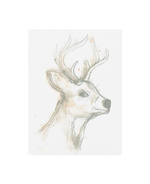 "Trademark Global June Erica Vess Deer Cameo IV Canvas Art - 19.5"" x 26"""