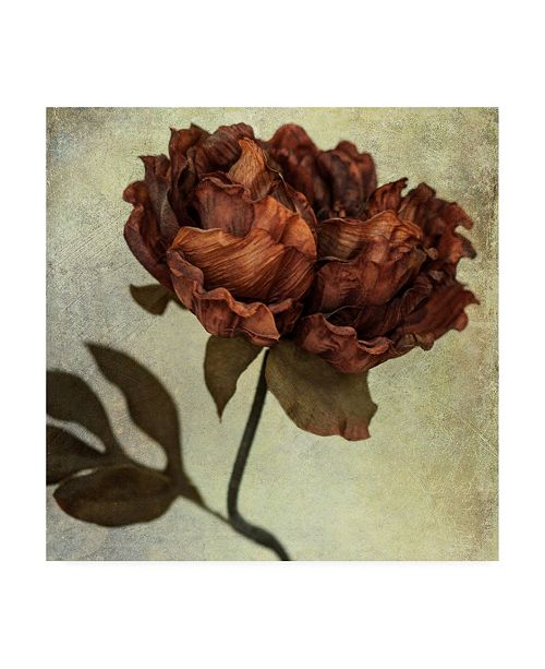 "Trademark Global Honey Malek Lush Vintage Florals V Canvas Art - 36.5"" x 48"""