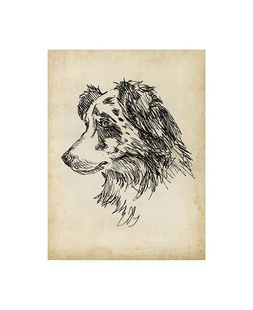 "Trademark Global Ethan Harper Breed Studies XI Canvas Art - 19.5"" x 26"""