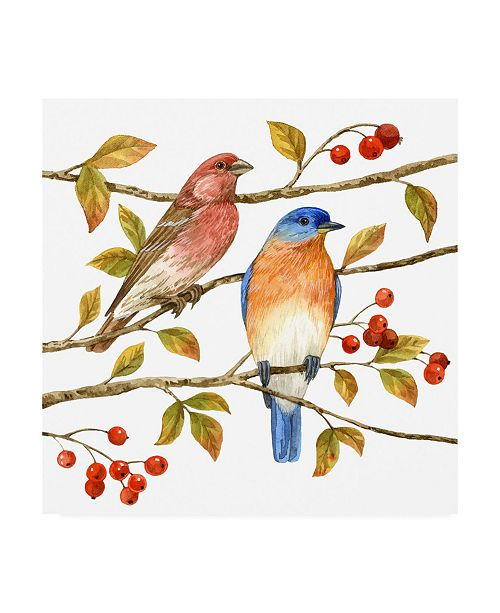 """Trademark Global Jane Maday Birds and Berries IV Canvas Art - 36.5"""" x 48"""""""