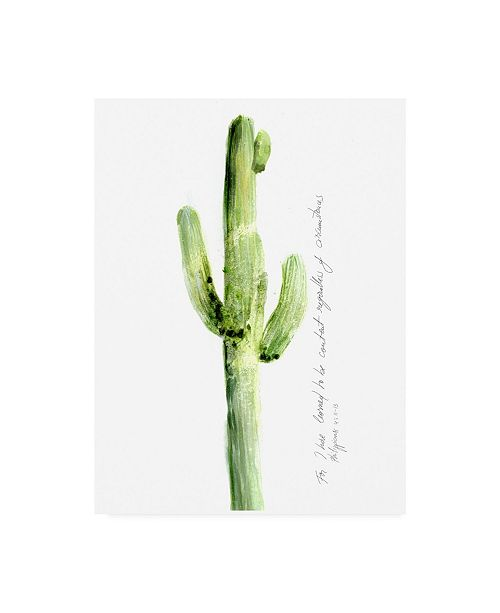"Trademark Global Ingrid Blixt Cactus Verse V Canvas Art - 19.5"" x 26"""