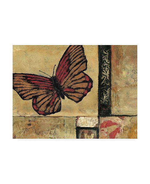 "Trademark Global Judi Bagnato Butterfly in Border I Canvas Art - 19.5"" x 26"""