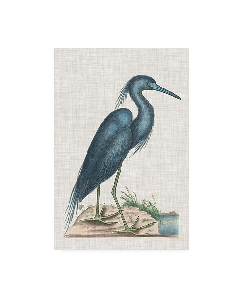 "Trademark Global Mark Catesby Catesby Heron II Canvas Art - 19.5"" x 26"""