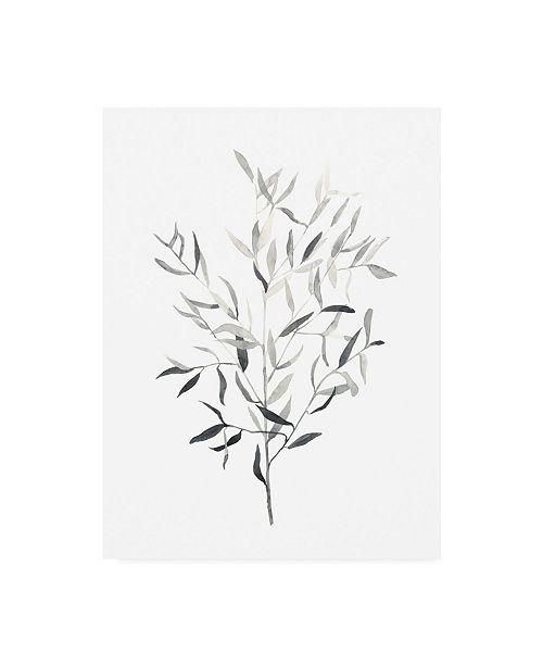 "Trademark Global Emma Scarvey Paynes Grey Botanicals III Canvas Art - 36.5"" x 48"""