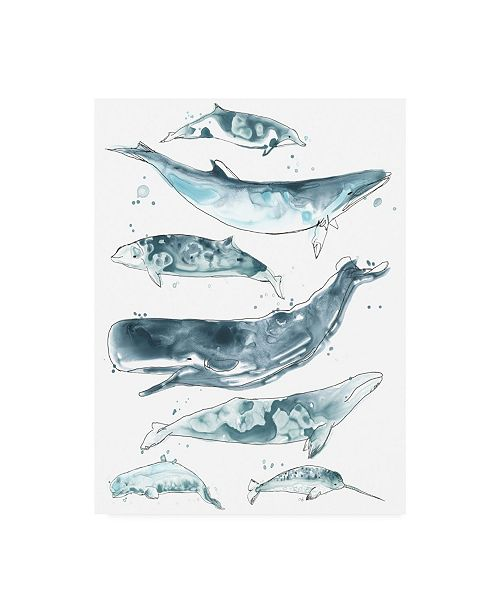 "Trademark Global June Erica Vess Cetacea II Canvas Art - 36.5"" x 48"""
