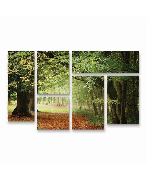 "Trademark Global Philippe Sainte-Laudy Through the Woods Multi Panel Art Set 6 Piece - 49"" x 19"""