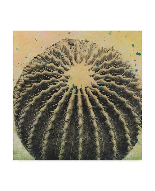 """Trademark Global Naomi Mccavitt Desert Dreams III Canvas Art - 27"""" x 33"""""""