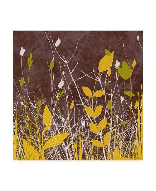 """Trademark Global Irena Orlov Botany Expressions V Canvas Art - 15"""" x 20"""""""