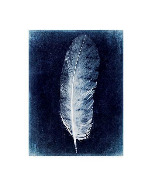 "Trademark Global Honey Malek Inverted Feather VI Canvas Art - 20"" x 25"""