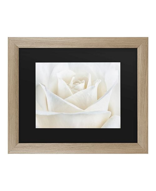"Trademark Global Cora Niele Pure White Rose Matted Framed Art - 27"" x 33"""