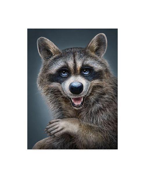 "Trademark Global Patrick Lamontagne Raccoon Totem Canvas Art - 20"" x 25"""