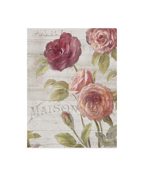 "Trademark Global Danhui Nai French Roses III Canvas Art - 20"" x 25"""