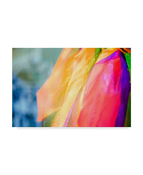 "Trademark Global Pixie Pics Colorful Fashion Scarf Canvas Art - 37"" x 49"""